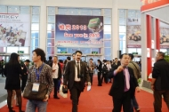The Xiamen fair 2012